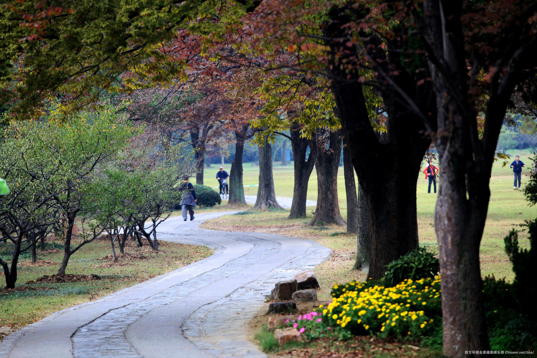 明孝陵石像路