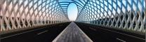 《早起5点去拍了拍未来科技城的桥》
